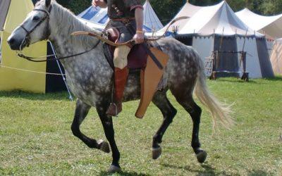 Ragnaris der Hunne – der letzte Anführer der Goten in Italien